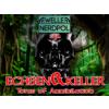 Echsen und Keller #2.5
