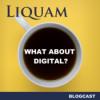 Liquam Blogcast #19 - Digital Due Diligence - wieso, weshalb, warum? Download