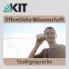 Virtuelle Heimaten: Licht, Schatten, Zukunft? 31.05.2017
