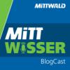 Shopware 6: Mittwald im Interview mit Wiljo Kretching
