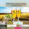 Veltins: Gimme, Gimme, Gimme a Bier! |Folge 77| Download