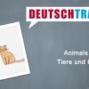 Deutschtrainer – 86 Tiere und Haustiere