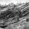 Der Meteor von Tunguska