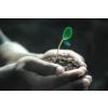 Lebensdienliche Wachstumshinweise