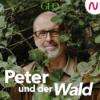 TAKEOVER Brigitte BeGreen: Peter Wohlleben - Macht Bäume pflanzen Sinn?