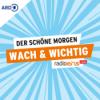 EM-Halbfinal-Kracher / Grünes Kampagnen-Desaster / Lucy Dacus' Album der Woche