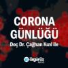 Çağhan Kızıl: Türkiye, sonbaharda yeni bir pandemi dalgası ile karşılaşabilir! Download