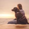 Musik für Hunde