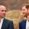 Prinz Harry und Prinz William – zwei ungleiche Brüder