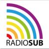 Sendung 1251: So war der CSD 2021 in Frankfurt – Die Livesendung von radioSUB