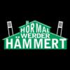 #SVWBMG: Hör mal Werder absteigt