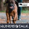 Osterfolge - Suchspiele mit der Hundenase Download