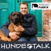 Hundebegnungen meistern - das Problem fängt im Kopf an Download