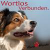 Urlaub ohne Hund - Ist das auch okay?