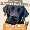 Podcast - Das Gesunde Tier - Welpen