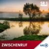 Gegen die Gleichgültigkeit - Willi Graf Download
