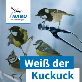 "Podcast ""Weiß der Kuckuck"" Folge 02   Ökotürme"