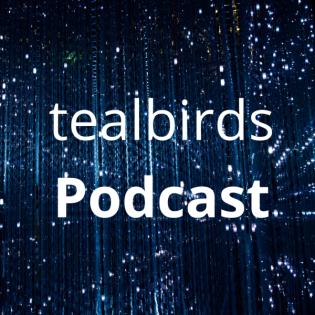 Episode 09 - Holacracy als Update für erfolgreiche Selbstorganisation? mit Anne Kliebisch