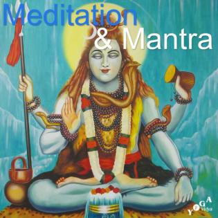 Yoga Vidya Online Programm