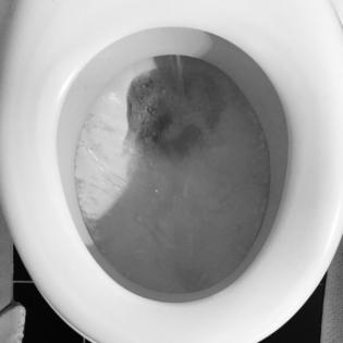 #2 Der Tag an dem ich vergaß die Toilette abzuspülen