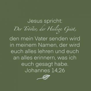 Johannes 14, 26