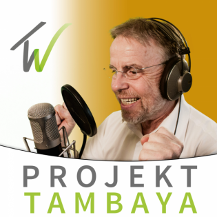 Was ist Citizen Development? (107)