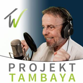 Was macht Merger Projekte aus? (106)