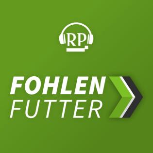 Von Hütters erstem Sieg und Augsburger Zirbelnüssen nebst Ex-Borussen