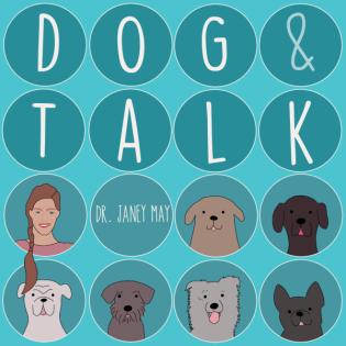Mythen über positives Hundetraining