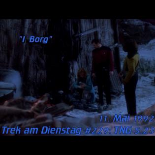 #229: I Borg (TNG 5.23)