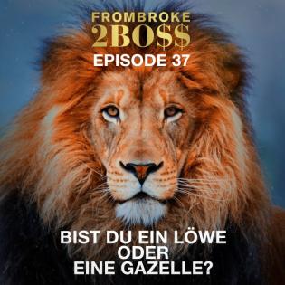 #37 Quick Message Special - Bist du ein Löwe oder eine Gazelle?