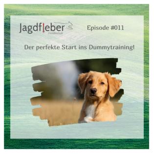 P011: Der perfekte Start in die Dummyarbeit