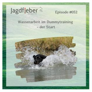 P052: Wasserarbeit im Dummytraining - der Start