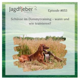 P053: Schüsse im Dummytraining - wann und wie trainieren?