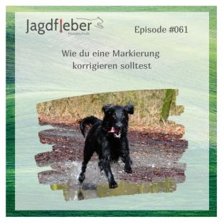 P061: Wie du eine Markierung korrigieren solltest