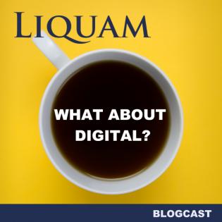 Liquam Blogcast #22 - Corporate Influencing
