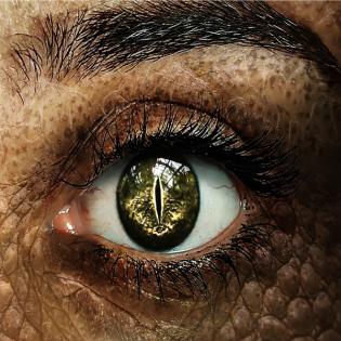 [DSA Hörspiel] Im Auge des Drachen #17 | Drachenauge (Fanmade)