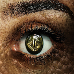 [DSA Hörspiel] Im Auge des Drachen 01