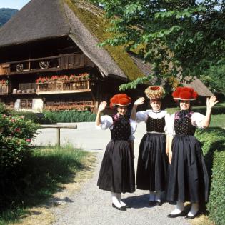Schwarzwald – wie geht es Dir? Eine Landschaft im Umbruch
