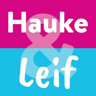 Die wahren Gründe warum Hauke nicht erneut kandidiert und darüber wo die Kampagne der SPD bleibt..?