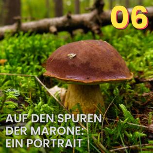 #6 Auf den Spuren der Marone: Ein Portrait