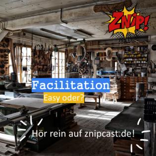 Folge 053 Facilitation