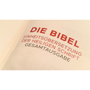 Mt 13,36-43 - Gespräch mit Pfarrer Fabian Maysenhölder