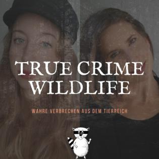 Spezialfolge: Sex and Crime