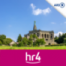 Tierheim Fulda-Hünfeld sucht Helfer - 12.30 Uhr