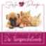 AV079: Zahngesundheit Hund und Katze
