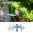 Morgenandacht auf NDR1 Radio MV