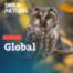 Ueberlinger Weltacker – Globale Zusammenhänge von Landwirtschaft und Ernährung auf 2000 m2