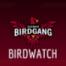Birdwatch Episode 12 | Record Prediction