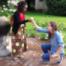 Heiraten Teil 3: Die Anerkennung in Deutschland